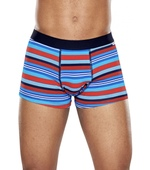 ODEV STRIPE TRUNKphoto